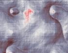 2005 cracken